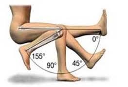 knee range of motion